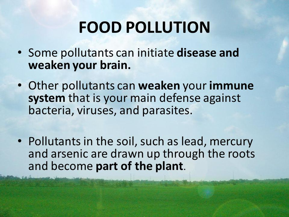 FOOD POLLUTION Some pollutants can initiate disease and weaken your brain. Other pollutants can weaken your immune system that is your main defense ag