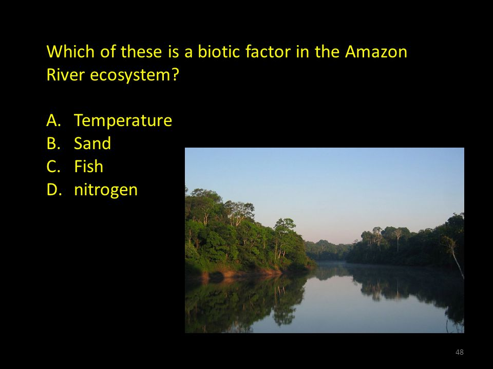 Which of these is a biotic factor in the Amazon River ecosystem.