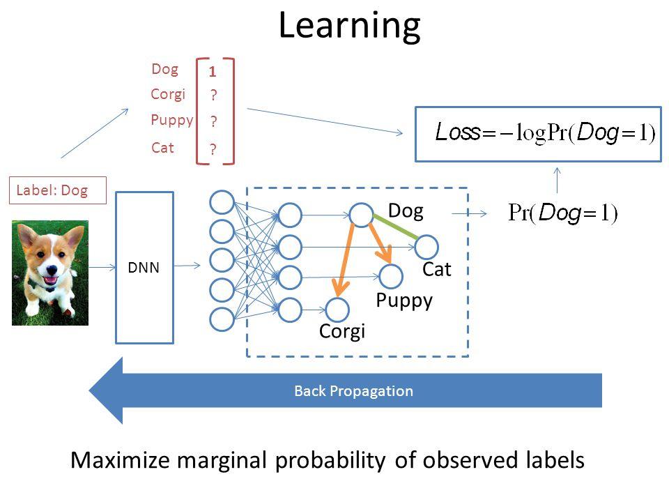Learning Corgi Puppy Dog Cat DNN Label: Dog Maximize marginal probability of observed labels Back Propagation Dog Corgi Puppy Cat 1 .