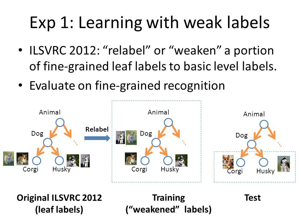 ILSVRC 2012: relabel or weaken a portion of fine-grained leaf labels to basic level labels.