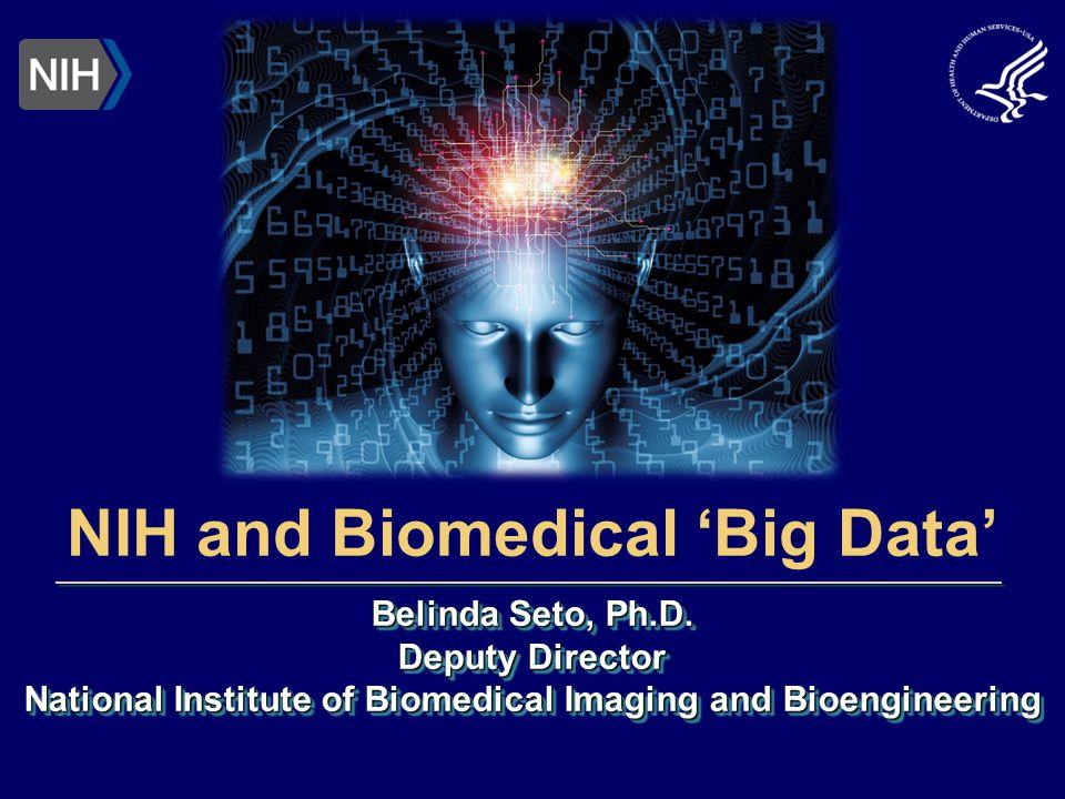 Belinda Seto, Ph.D. Deputy Director National Institute of Biomedical Imaging and Bioengineering Belinda Seto, Ph.D. Deputy Director National Institute