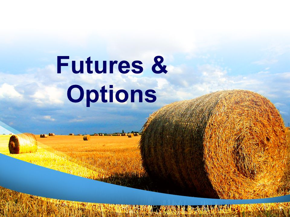 HEDGING WITH FUTURES AND BASIS What is important to consider when hedging is basis history and market expectations.