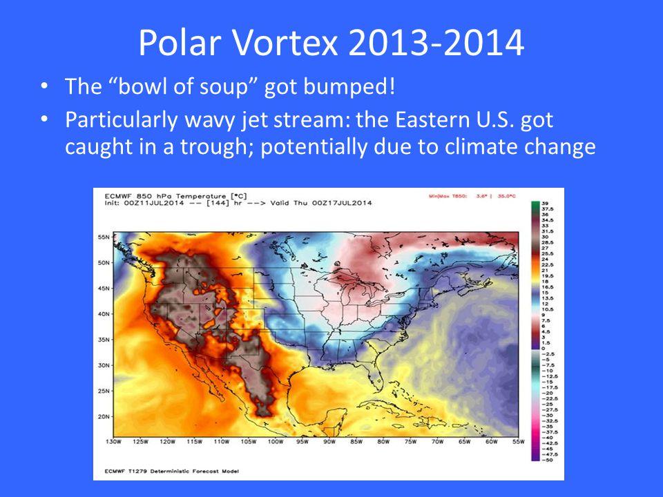Polar Vortex in the U.S.