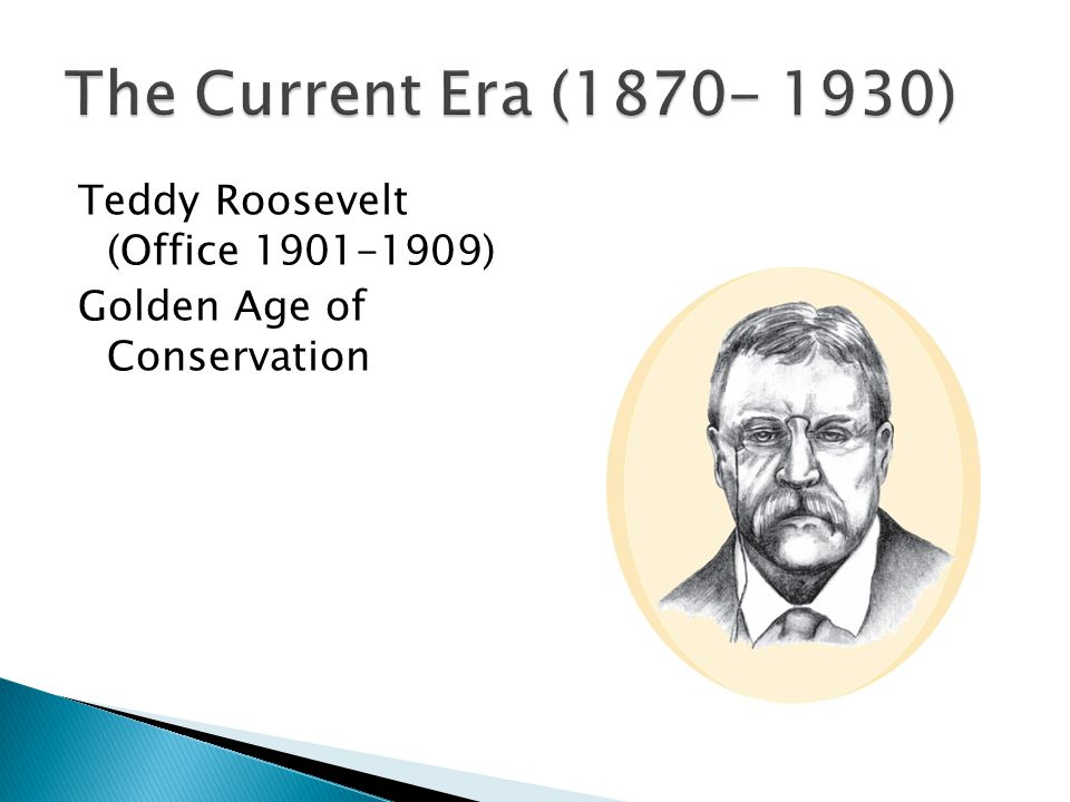 Teddy Roosevelt (Office 1901-1909) Golden Age of Conservation