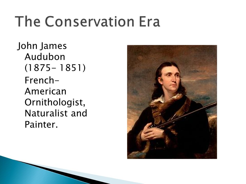 John James Audubon (1875- 1851) French- American Ornithologist, Naturalist and Painter.