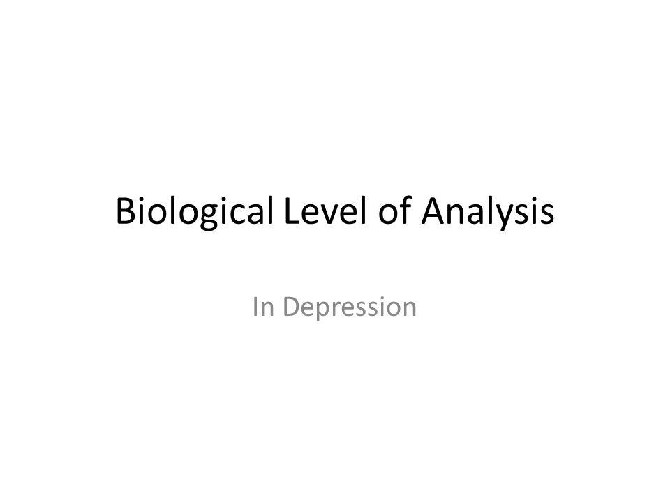 Serotonin Hypothesis