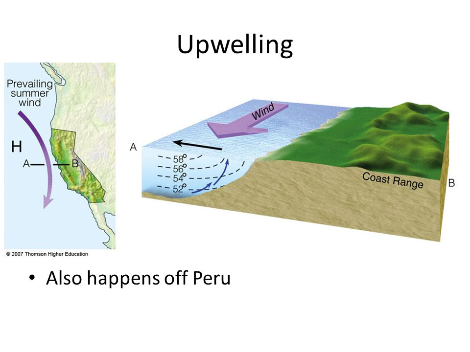 Upwelling Also happens off Peru