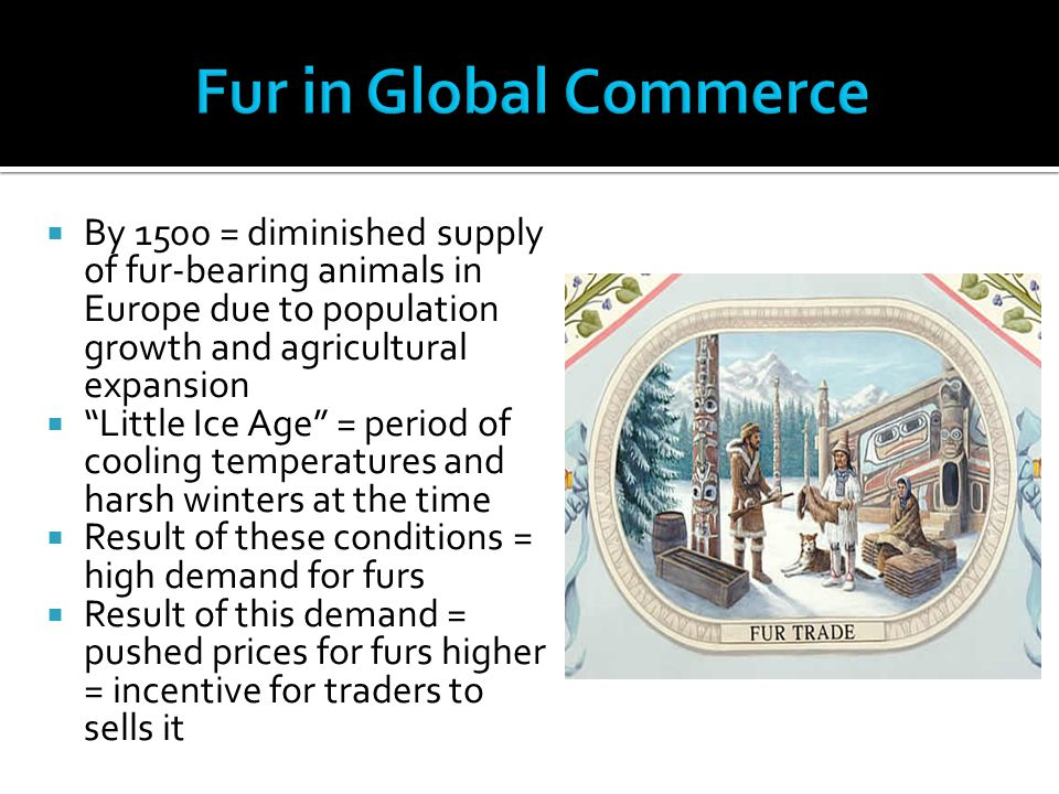 """ By 1500 = diminished supply of fur-bearing animals in Europe due to population growth and agricultural expansion  """"Little Ice Age"""" = period of cool"""