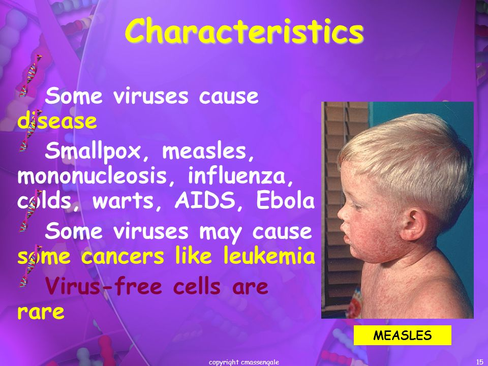 15Characteristics Some viruses cause disease Smallpox, measles, mononucleosis, influenza, colds, warts, AIDS, Ebola Some viruses may cause some cancer