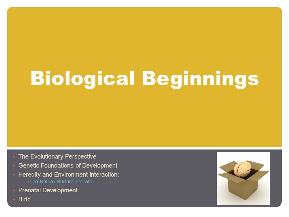 Biological Beginnings  The Evolutionary Perspective  Genetic Foundations of Development  Heredity and Environment interaction:  The Nature-Nurture