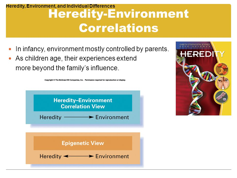 Heredity-Environment Correlations In infancy, environment mostly controlled by parents. As children age, their experiences extend more beyond the fami