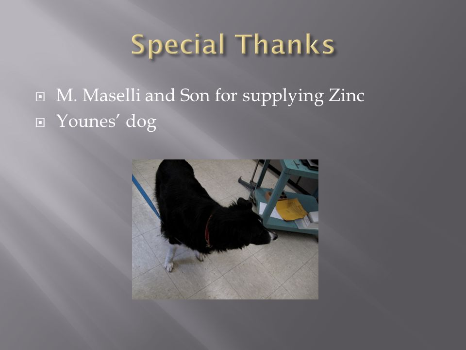  M. Maselli and Son for supplying Zinc  Younes' dog