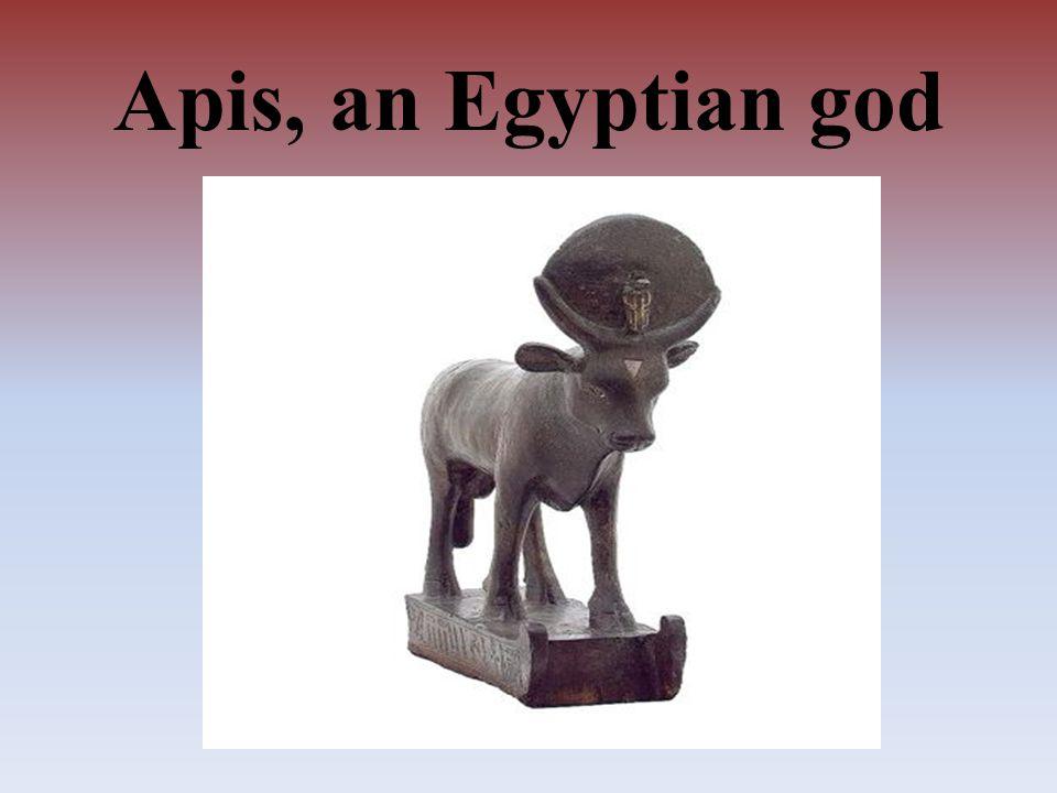 Apis, an Egyptian god