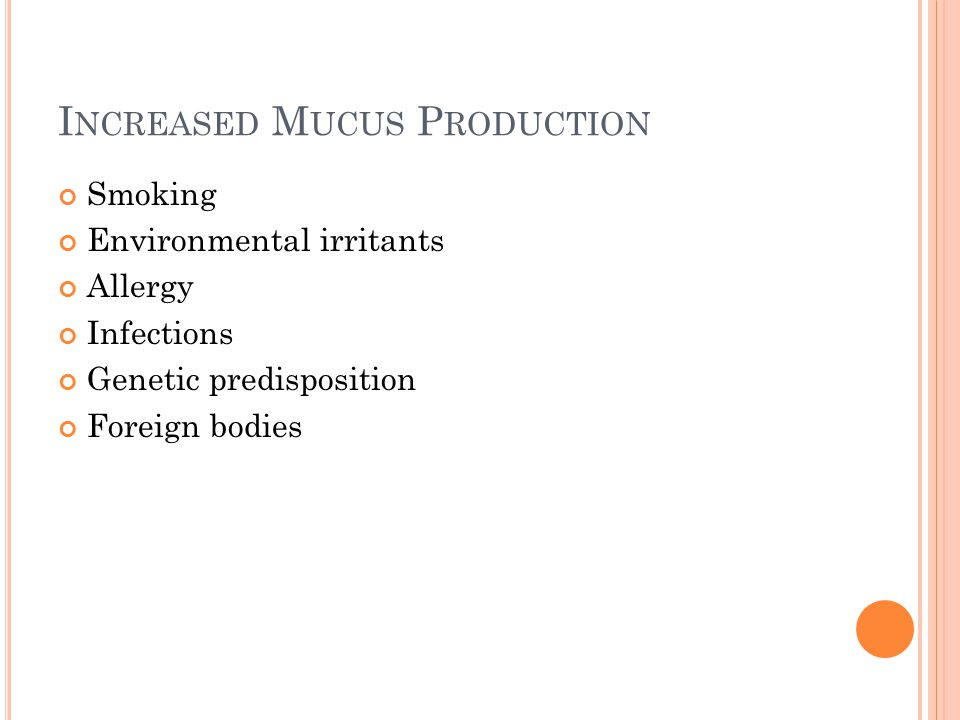 M UCUS P RODUCTION Normal person produces 100 mL of mucus per 24 hour period Most is reabsorbed back in the bronchial mucosa 10 mL reaches the glottis Most of this is swallowed Mucus production increases with lung disease