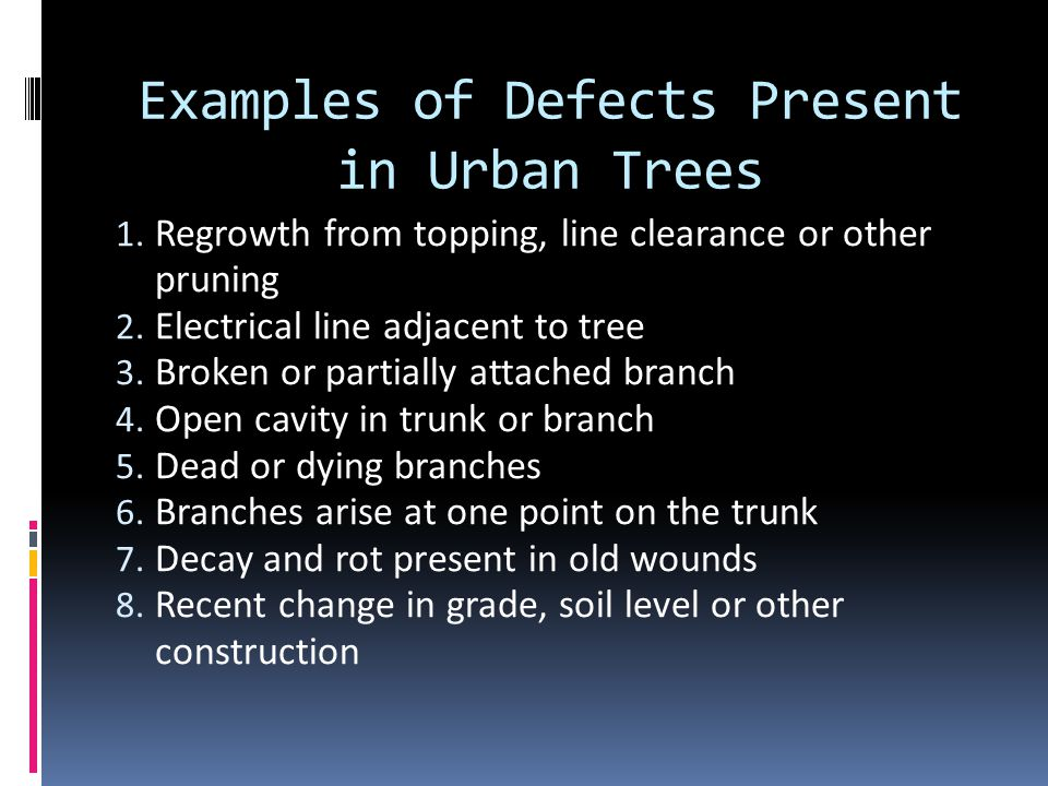 Examples of Defects Present in Urban Trees 1.