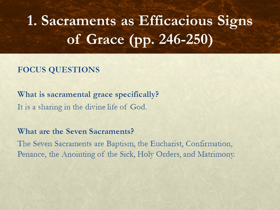 FOCUS QUESTIONS What is sacramental grace specifically? It is a sharing in the divine life of God. What are the Seven Sacraments? The Seven Sacraments