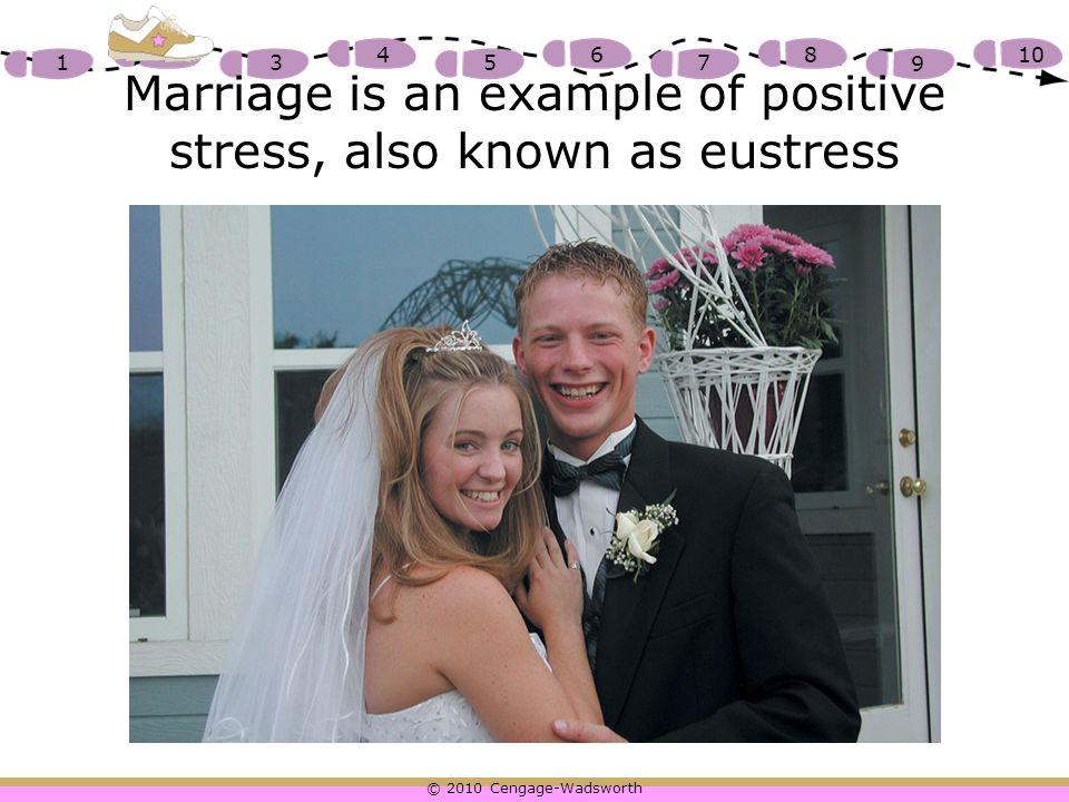 © 2010 Cengage-Wadsworth 1 2 3 4 5 6 7 8 9 10 Vandalism causes distress or negative stress
