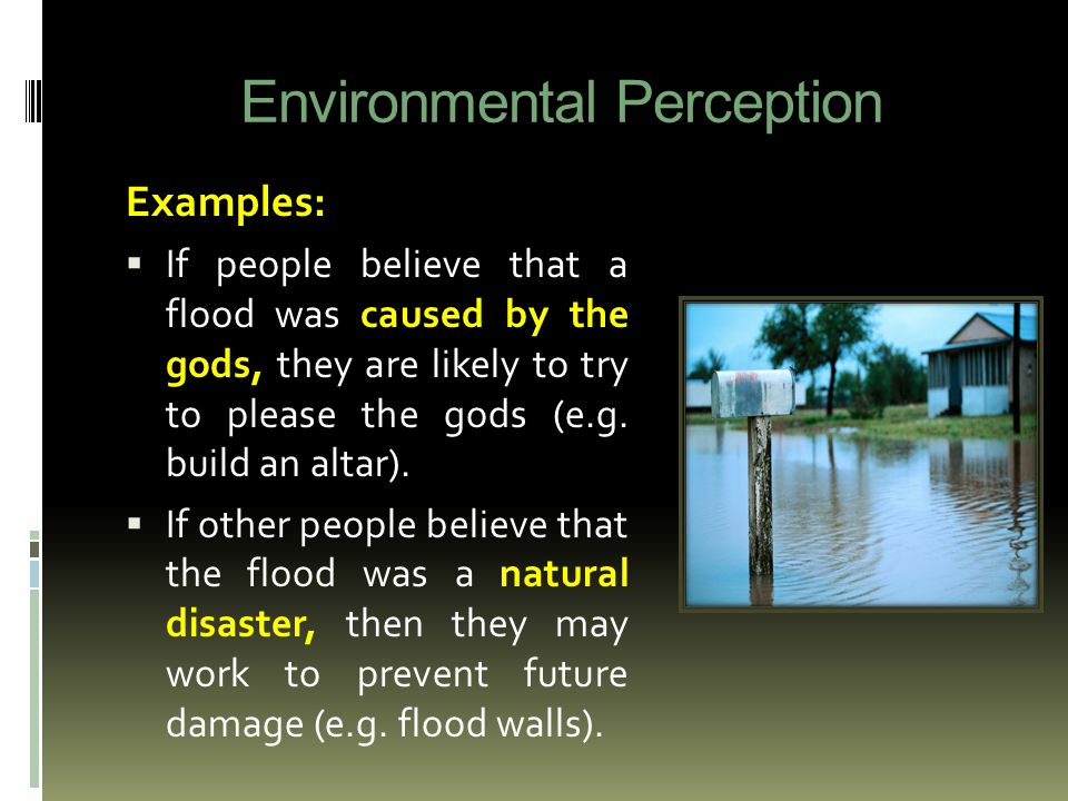 Environmental Perception Examples:  If people believe that a flood was caused by the gods, they are likely to try to please the gods (e.g.