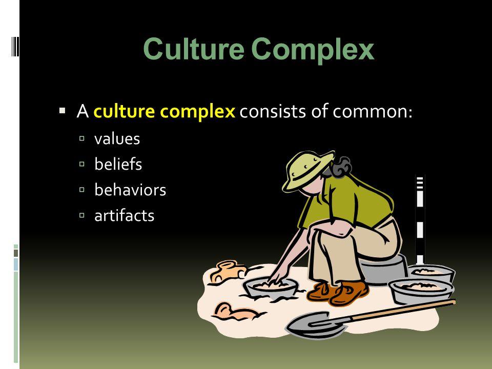 Culture Complex  A culture complex consists of common:  values  beliefs  behaviors  artifacts