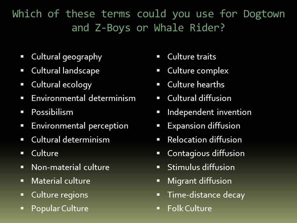 Which of these terms could you use for Dogtown and Z-Boys or Whale Rider.