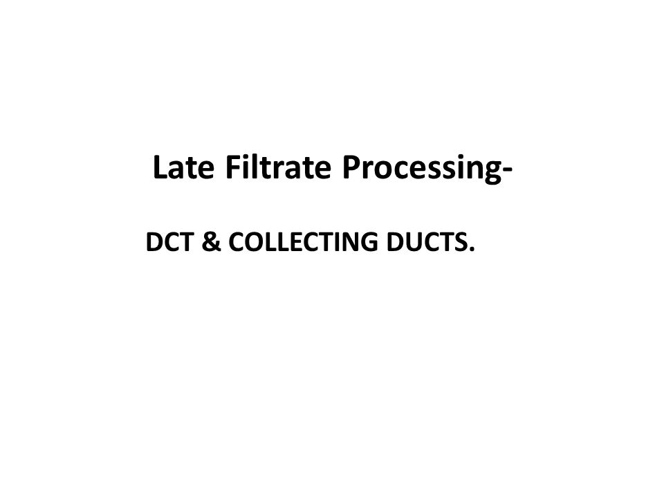 Late Filtrate Processing- DCT & COLLECTING DUCTS.