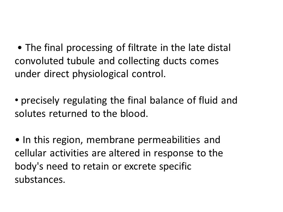 The final processing of filtrate in the late distal convoluted tubule and collecting ducts comes under direct physiological control. precisely regulat