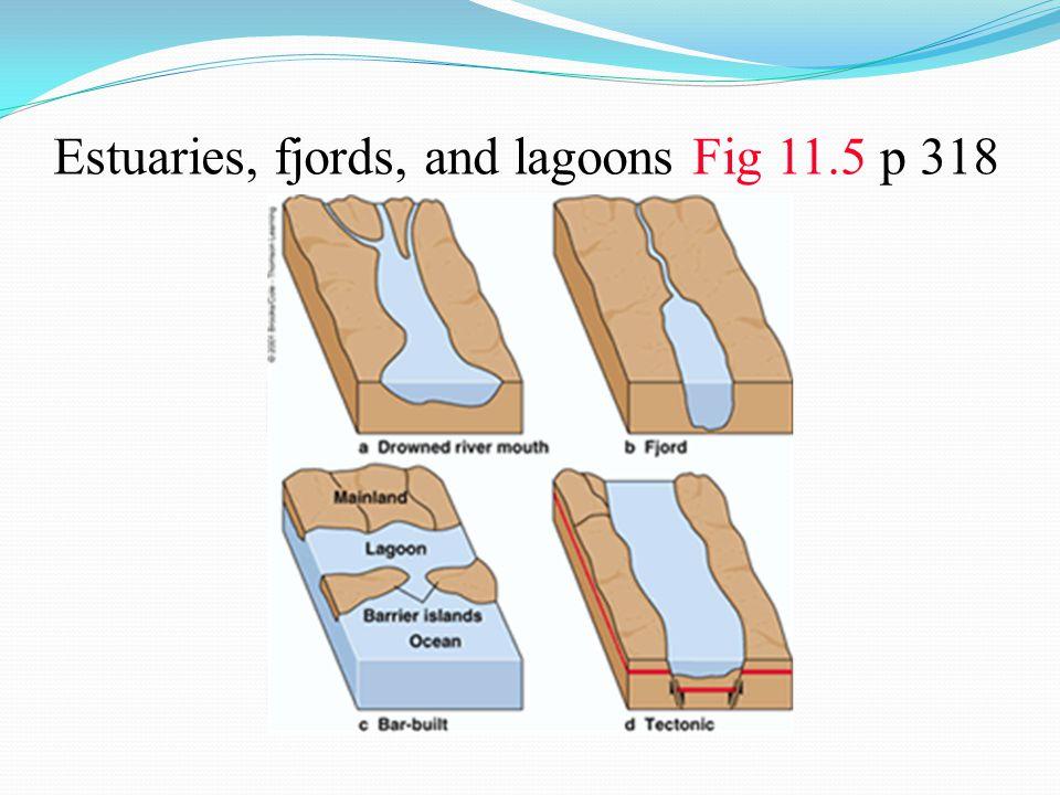 Estuaries, fjords, and lagoons Fig 11.5 p 318