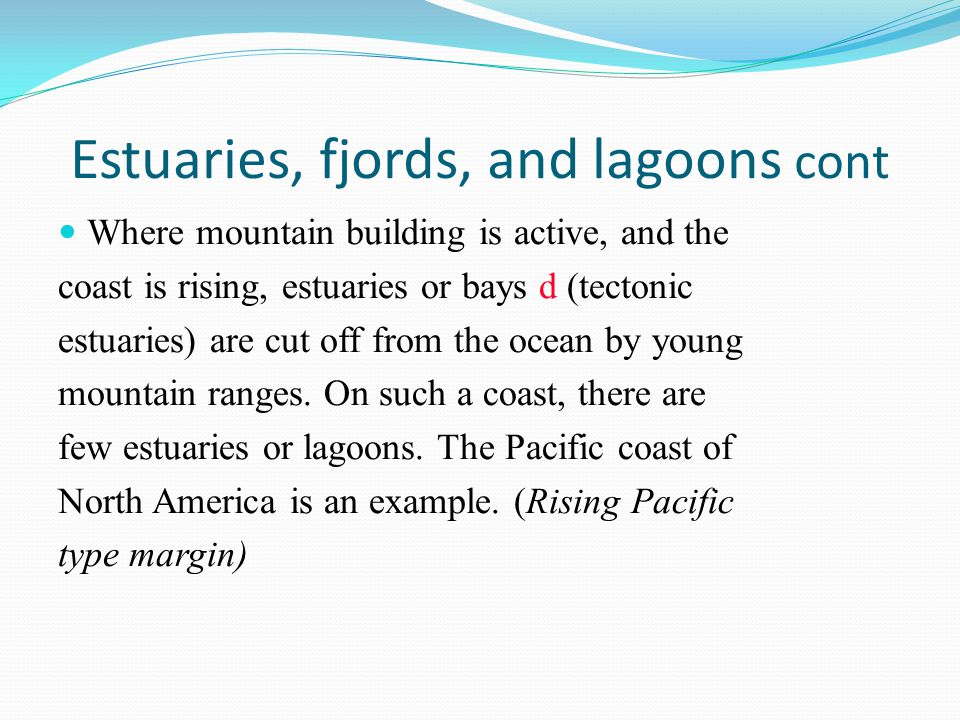 Estuaries, fjords, and lagoons cont Where mountain building is active, and the coast is rising, estuaries or bays d (tectonic estuaries) are cut off f