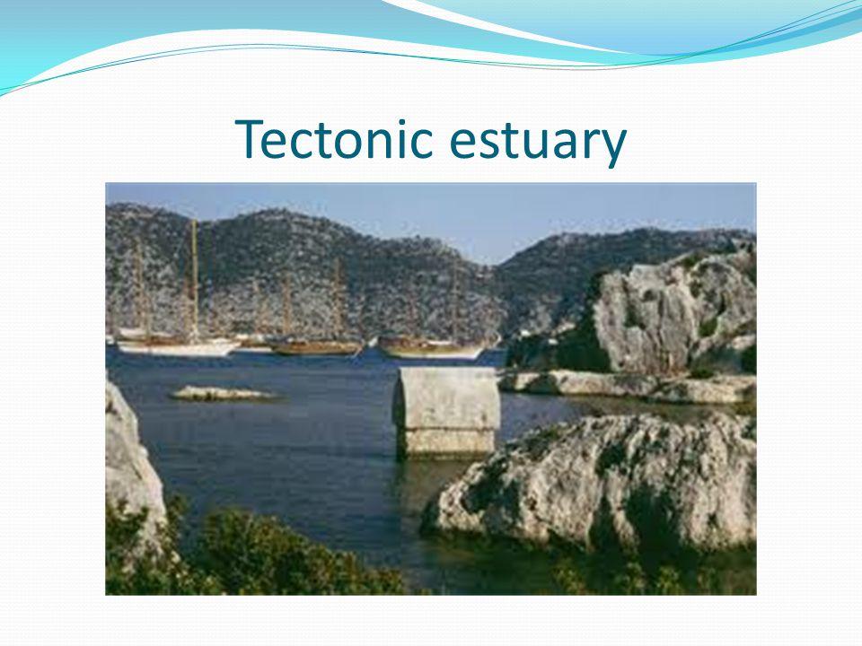 Tectonic estuary