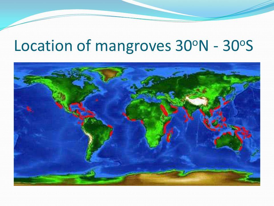 Location of mangroves 30 o N - 30 o S