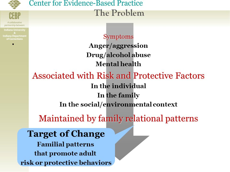 The Problem Symptoms Anger/aggression Drug/alcohol abuse Mental health Associated with Risk and Protective Factors In the individual In the family In