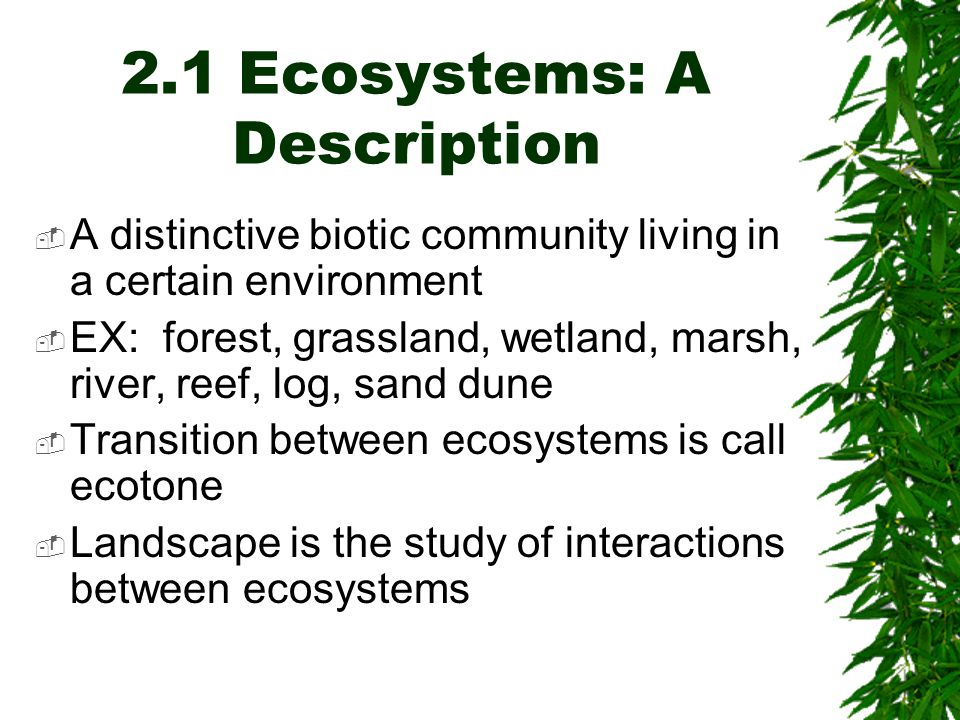 2.1 Ecosystems: A Description  A distinctive biotic community living in a certain environment  EX: forest, grassland, wetland, marsh, river, reef, log, sand dune  Transition between ecosystems is call ecotone  Landscape is the study of interactions between ecosystems