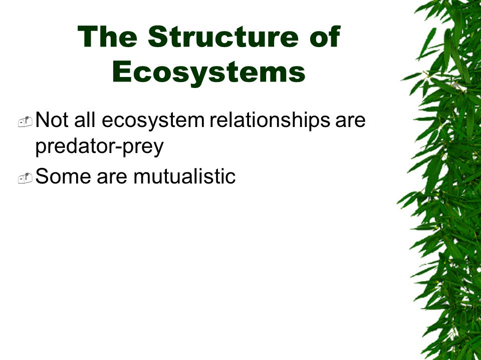 The Structure of Ecosystems  Not all ecosystem relationships are predator-prey  Some are mutualistic