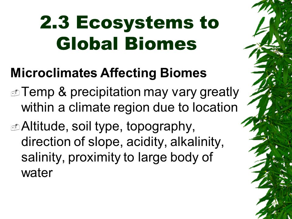 2.3 Ecosystems to Global Biomes Microclimates Affecting Biomes  Temp & precipitation may vary greatly within a climate region due to location  Altitude, soil type, topography, direction of slope, acidity, alkalinity, salinity, proximity to large body of water