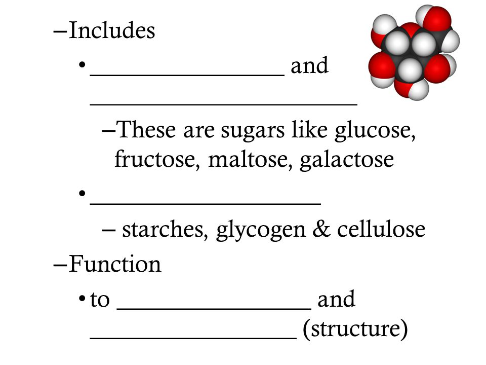 – Includes ________________ and ______________________ – These are sugars like glucose, fructose, maltose, galactose ___________________ – starches, g