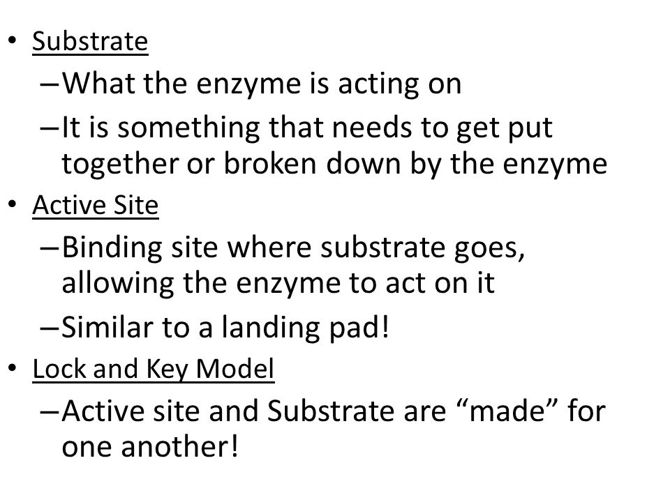 Substrate – What the enzyme is acting on – It is something that needs to get put together or broken down by the enzyme Active Site – Binding site wher