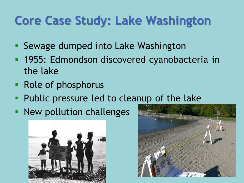 Core Case Study: Lake Washington  Sewage dumped into Lake Washington  1955: Edmondson discovered cyanobacteria in the lake  Role of phosphorus  Public pressure led to cleanup of the lake  New pollution challenges