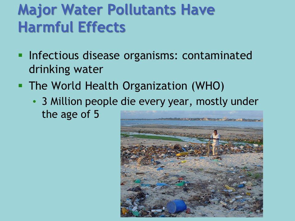Major Water Pollutants Have Harmful Effects  Infectious disease organisms: contaminated drinking water  The World Health Organization (WHO) 3 Million people die every year, mostly under the age of 5