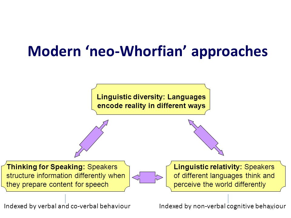 Modern 'neo-Whorfian' approaches Linguistic diversity: Languages encode reality in different ways Linguistic relativity: Speakers of different languag