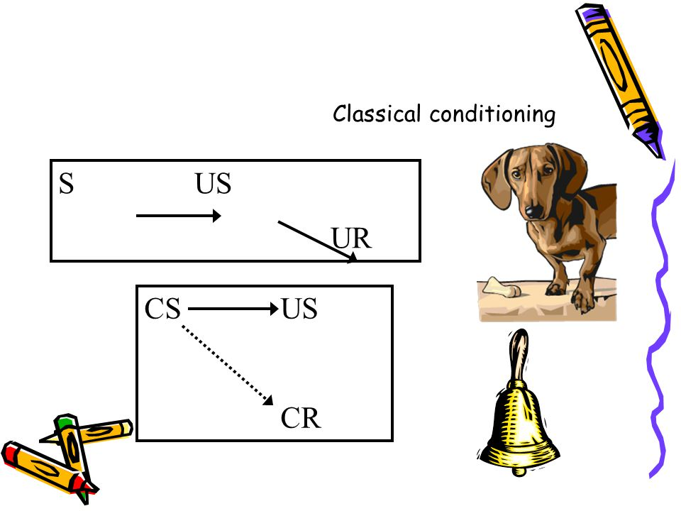 Classical conditioning SUS UR CSUS CR