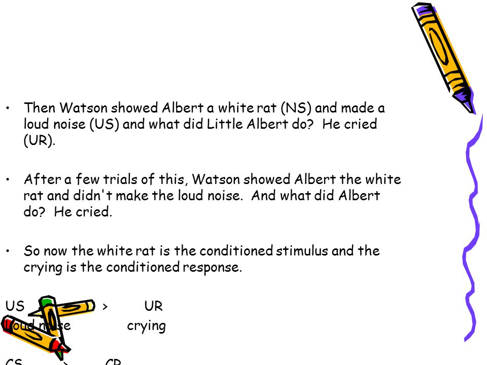 Then Watson showed Albert a white rat (NS) and made a loud noise (US) and what did Little Albert do.