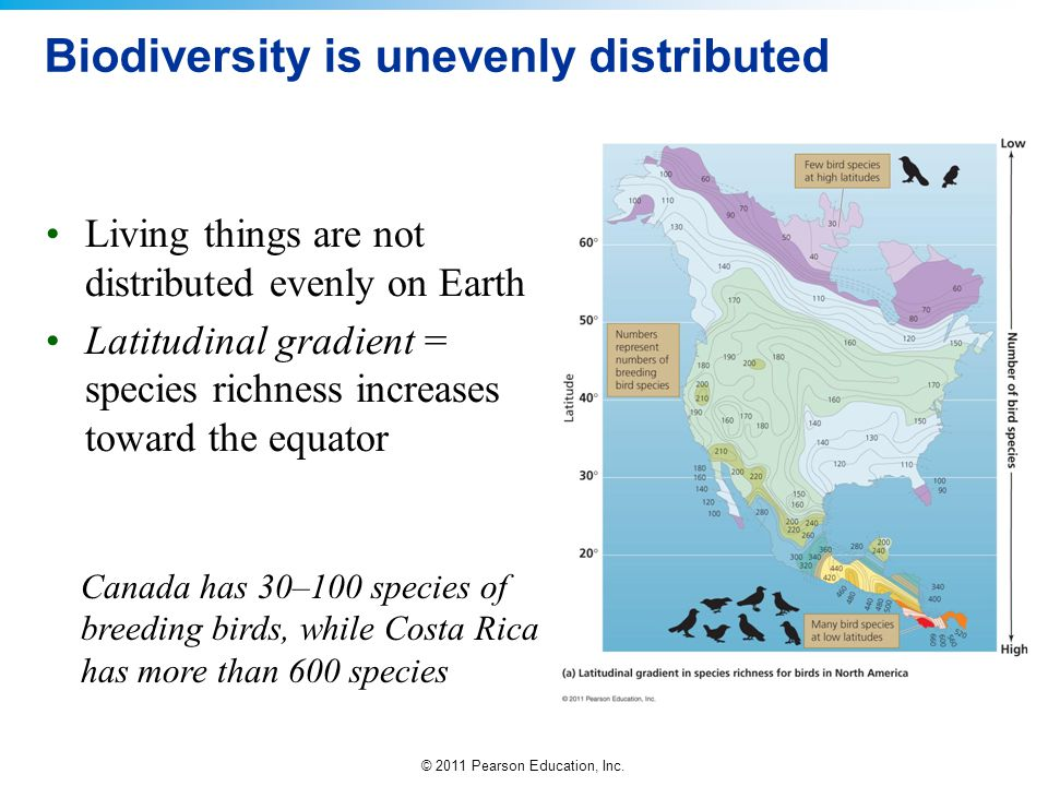 © 2011 Pearson Education, Inc. Biodiversity is unevenly distributed Living things are not distributed evenly on Earth Latitudinal gradient = species r