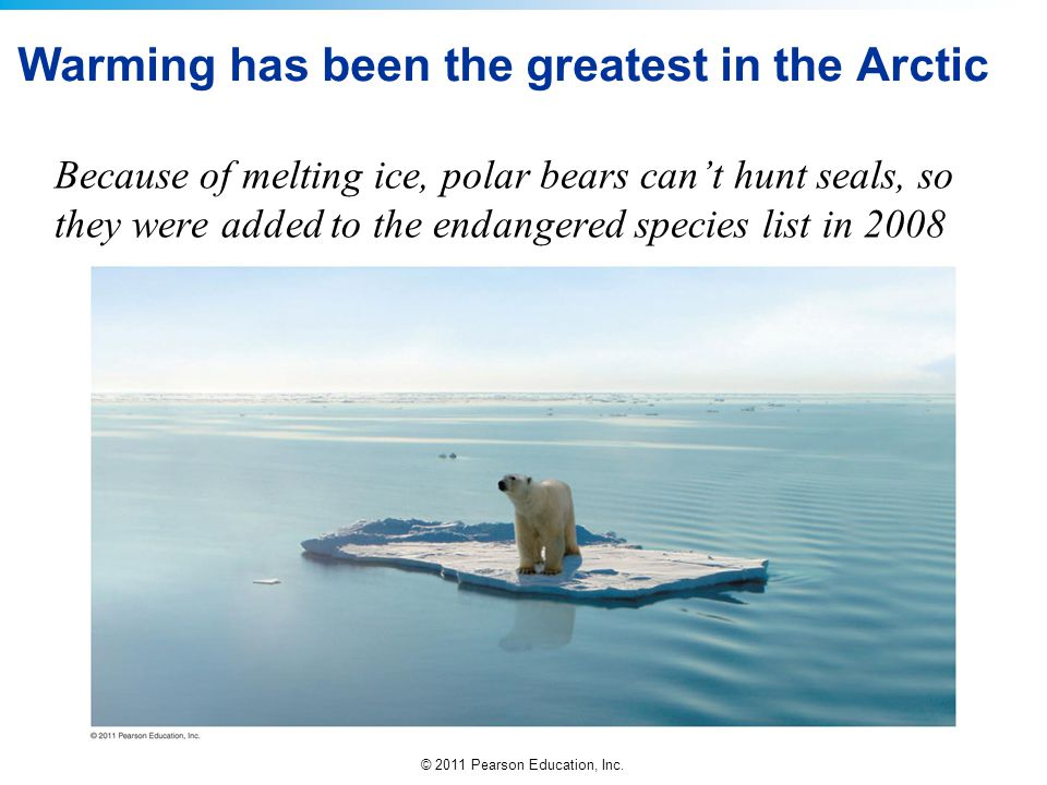 © 2011 Pearson Education, Inc. Warming has been the greatest in the Arctic Because of melting ice, polar bears can't hunt seals, so they were added to