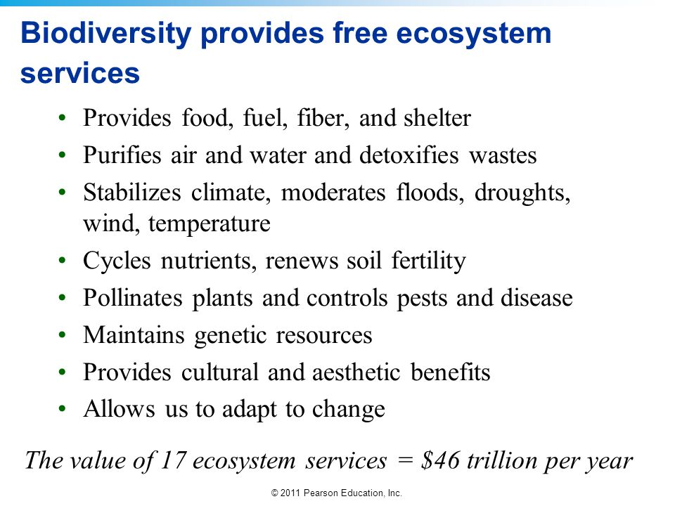 © 2011 Pearson Education, Inc. Biodiversity provides free ecosystem services Provides food, fuel, fiber, and shelter Purifies air and water and detoxi