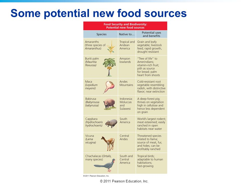 © 2011 Pearson Education, Inc. Some potential new food sources