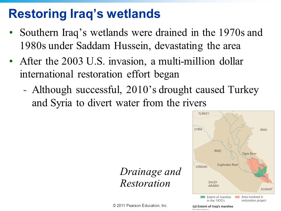 © 2011 Pearson Education, Inc. Restoring Iraq's wetlands Southern Iraq's wetlands were drained in the 1970s and 1980s under Saddam Hussein, devastatin