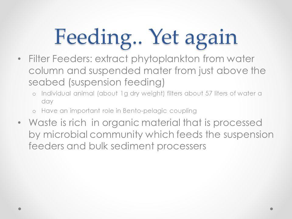 Feeding..
