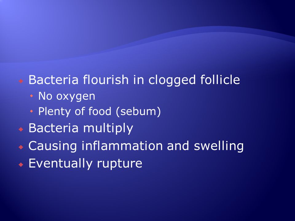  Bacteria flourish in clogged follicle  No oxygen  Plenty of food (sebum)  Bacteria multiply  Causing inflammation and swelling  Eventually rupt
