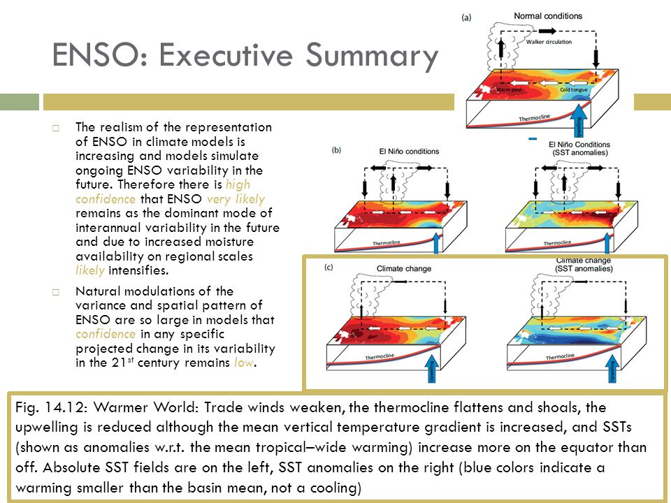 ENSO: Executive Summary  The realism of the representation of ENSO in climate models is increasing and models simulate ongoing ENSO variability in the future.