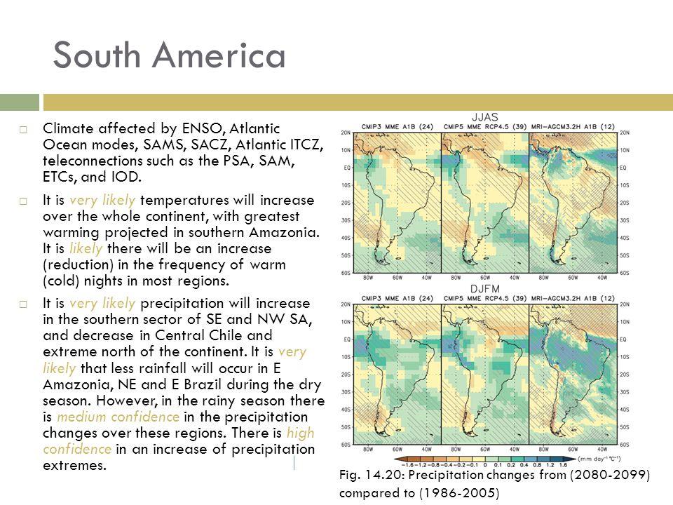 South America Fig.